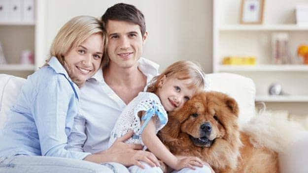Wills & Trusts dog-young-family Direct Wills Hanwell